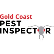 Best Gold Coast Pest Inspector