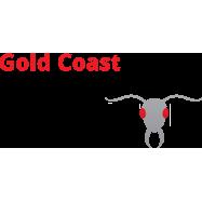 Best Gold Coast Pest Inspector
